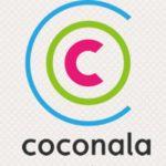 ココナラで副業しよう!知識や経験、スキルで稼げるサイト